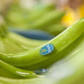 Niente spreco di banane