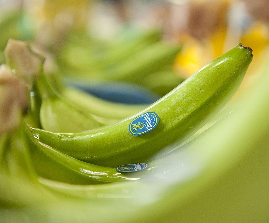 Banana_bollino blu - sostenibilità