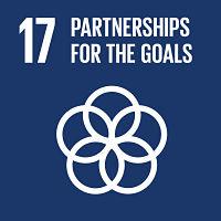 partnership_obiettivo_17