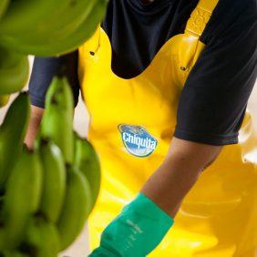 Chiquita e gli Obiettivi per lo Sviluppo Sostenibile delle Nazioni Unite: il nostro impegno per un pianeta sostenibile