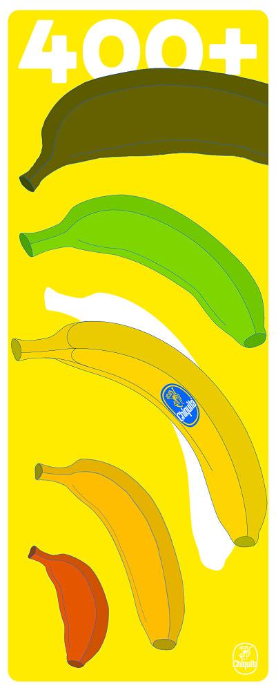 banana_400+